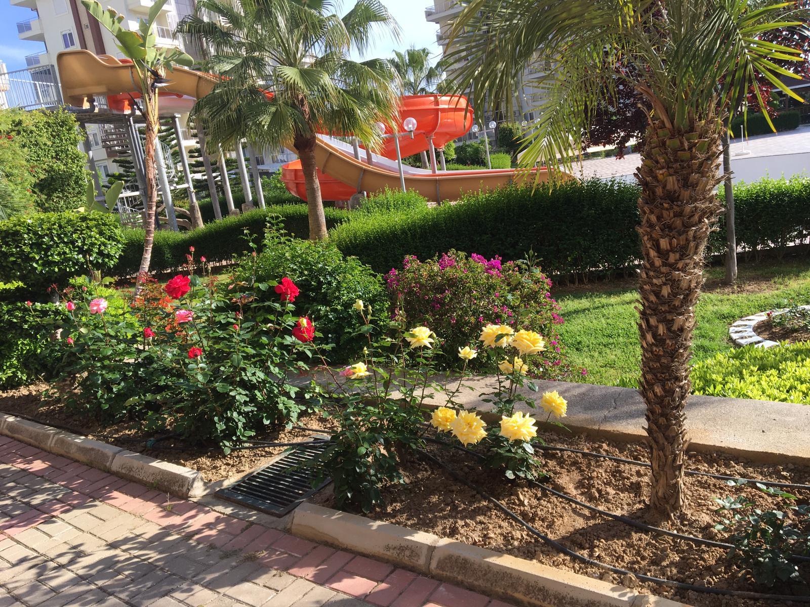 Bahçede peyzaj çalışmaları yapılmıştır, etraf yeni bitkilerle doldurulmuş, kompleksin girişinde çiçeklerden dekoratif bir kemeri yapılmıştır. Artık bahçemiz mis gibi kokuyor ve güzelliği ile herkesi c